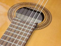 Gitarrenunterricht - vom Anfänger bis zum Könner